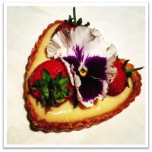 Vegan Earl Ferrers framed web